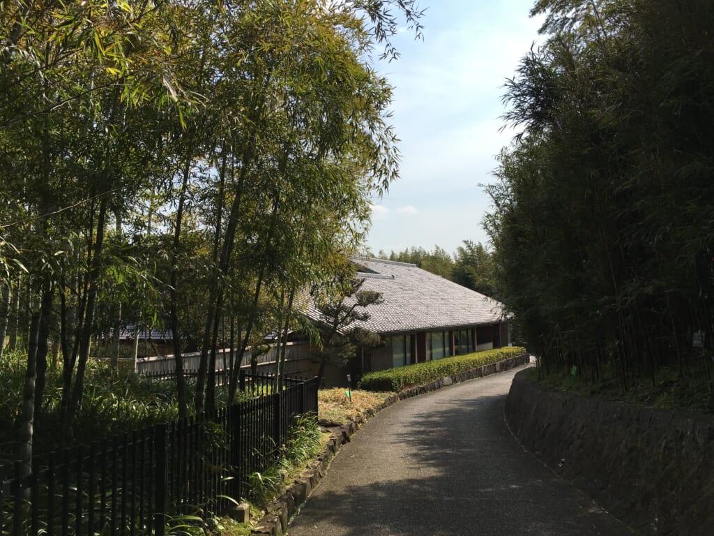 4.京都市洛西竹林公園